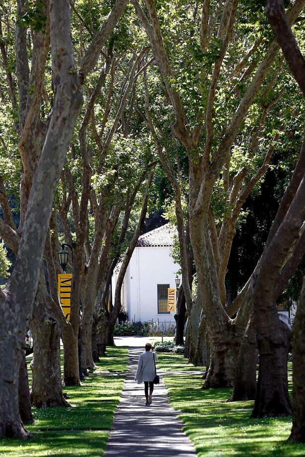 One of the tree lined sidewalks seen throughout the Mills College campus in Oakland. Photo: Michael Macor, The Chronicle