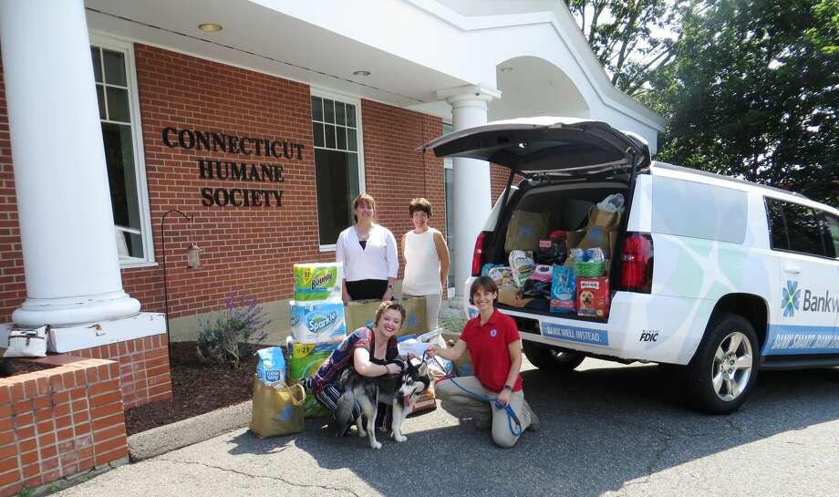 Bankwell collected and delivered donations to the Connecticut Humane Society. Pictured above (from left to right): Ann Mitrione, Bankwell Wilton Branch Manager, Lynne Gomez, Executive Assistant to Bankwell's CEO, Lucy French, Bankwell Marketing Associate and Bliss Kern, CT Humane Society Westport District Manager. Photo: Contributed/ Bankwell
