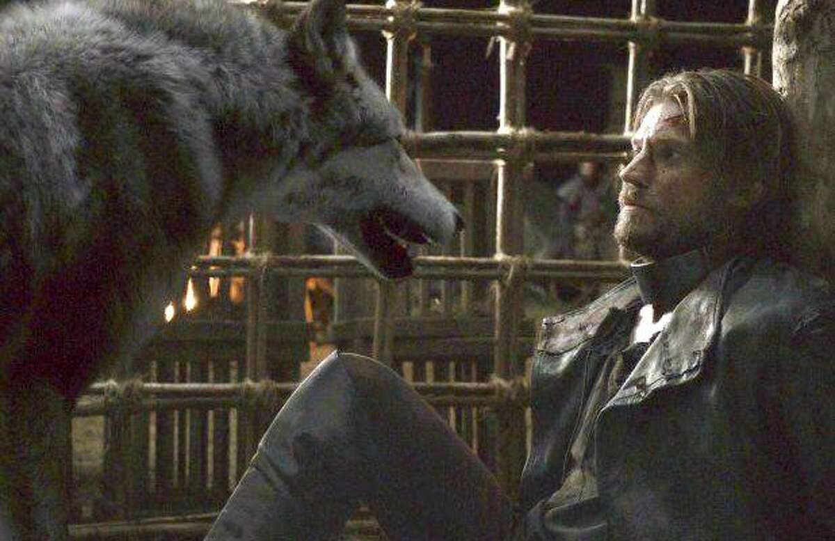 Jamie Lannister has a moment with Robb Stark's direwolf, Grey Wind, from season two of