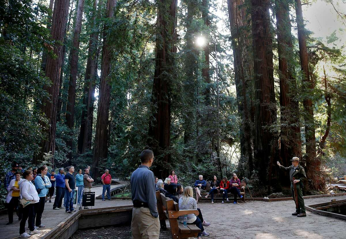 Visitors listened to a ranger talk about the history of Muir Woods at Bohemian Grove Sunday February 15, 2015. Admission is free this holiday weekend at all national parks including Muir Woods in Marin County. Parking, as usual, was the biggest problem for visitors to the woods.