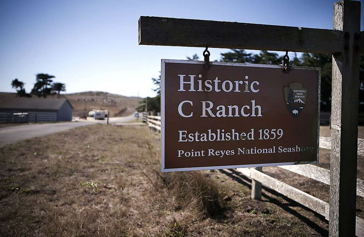 The historic C Ranch at the Point Reyes National Seashore, Calif., on Thursday Oct. 2, 2014. Ranchers are complaining about the tule elk along the Point Reyes National Seashore, because they have begun roaming onto their grazing lands, knocking down fences and foraging where their cattle forage. The ranchers want the elk removed and fenced off, but conservationists think they should roam free.