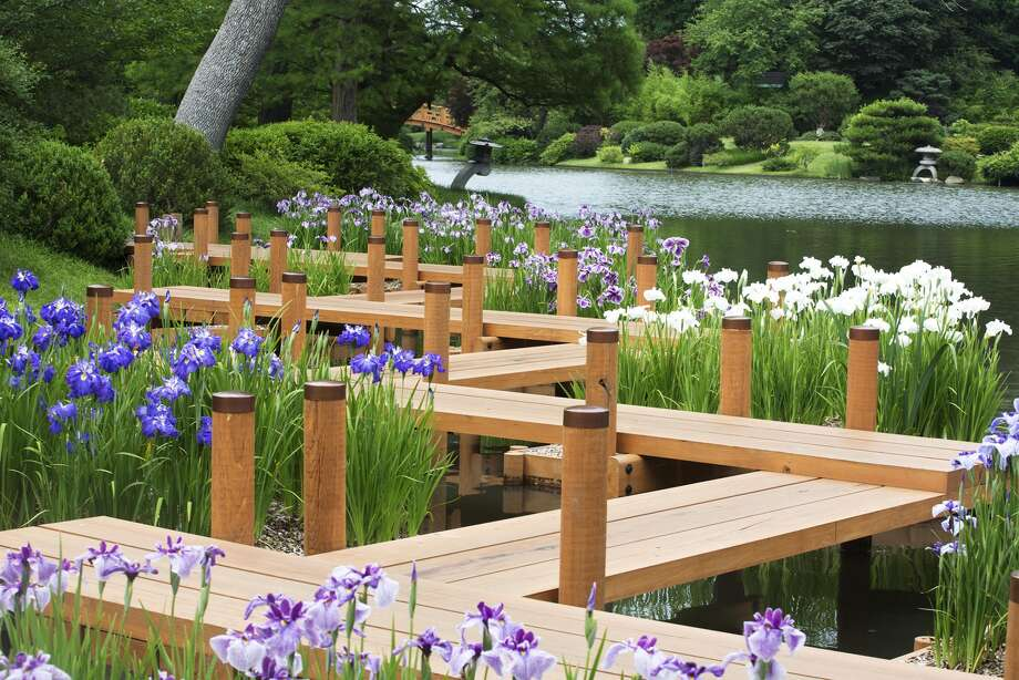 The Missouri Botanical Garden shows off its summer blooms. Photo: Photo Courtesy Of The Missouri Botanical Garden