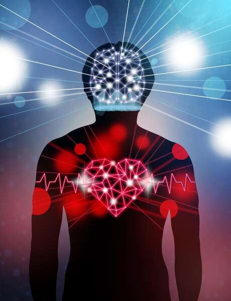 Silhouette of human body with technology line and dot of polygonal shape brain and heart, Science healthy education concept, physician technology with network connections and science healthy concept Photo: Photographer Is My Life., Getty Images