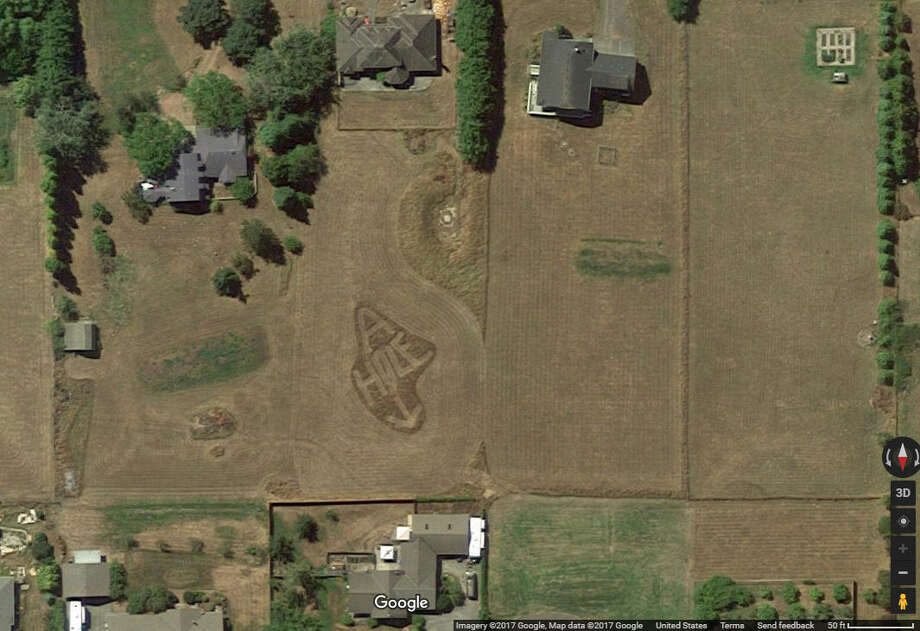 "A Washington state man took his feud to another level after he mowed ""A-HOLE"" into his yard with an arrow pointing to his neighbor, reports say. The Google satellite image of the workmanship has recently gone viral on Reddit. Continue clicking to see the other odd images that have been captured by Google Satellite and Street View. Photo: Google Maps Screenshot"