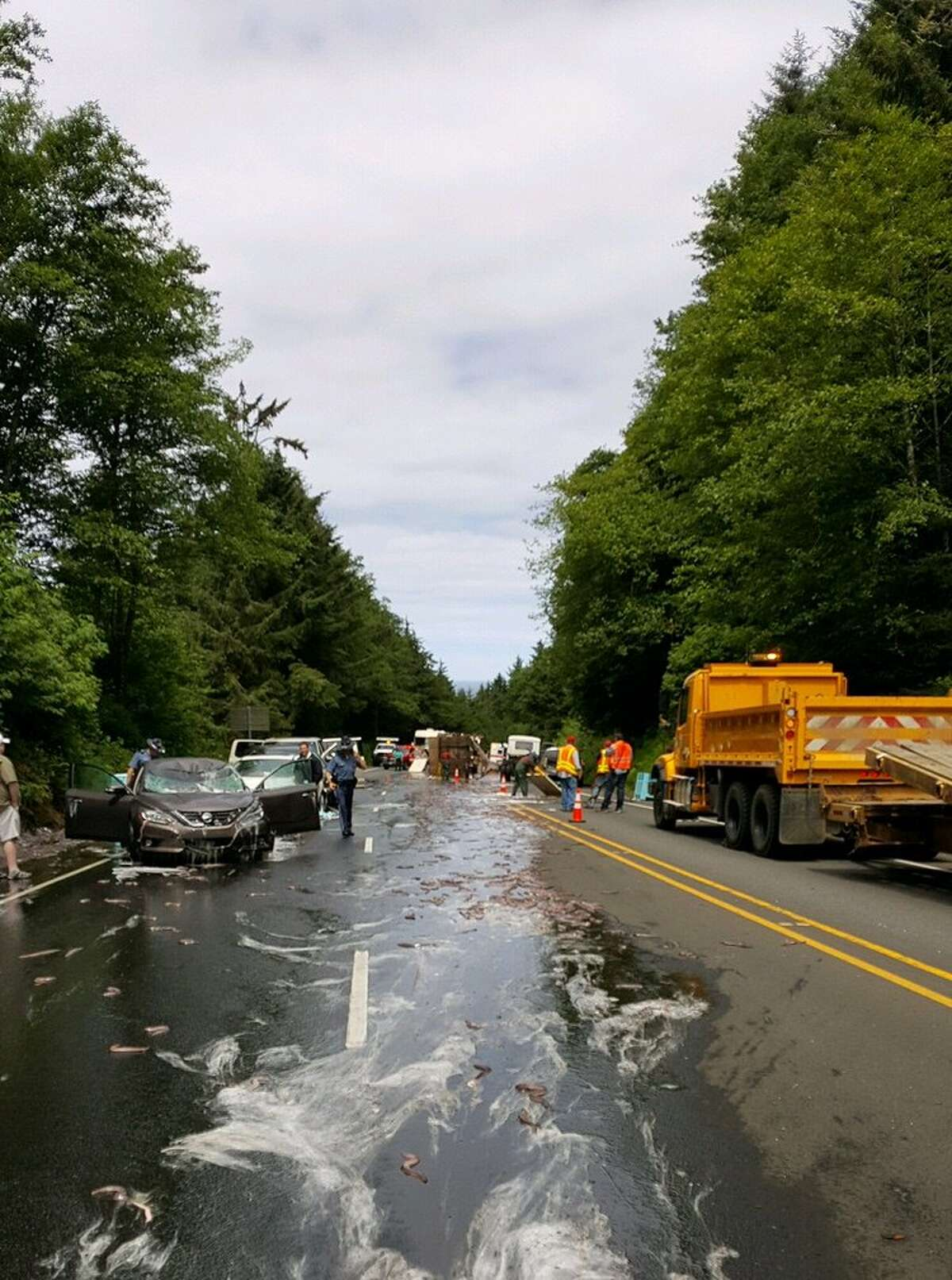 Oregon State Police released these photos showing the aftermath of an accident involving a truck carrying eels on Hwy. 101.