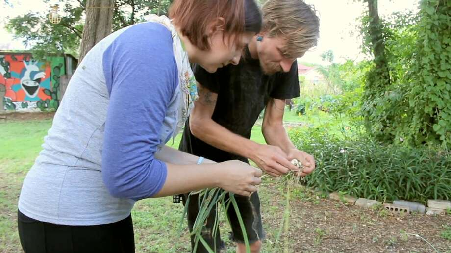 Katie Deitsch and Brian Gordon observe a green onion from the Roots of Change garden on E. Commerce Street. Photo: By Alexis Will, San Antonio Express-News