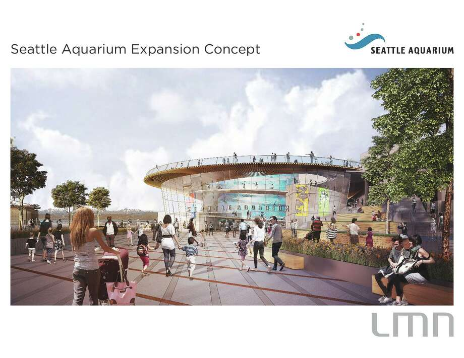 Conceptual renderings from LMN Architects show the Seattle Aquarium's Ocean Pavilion expansion, including a 350,000-gallon warm-water tank. Photo: Seattle Aquarium