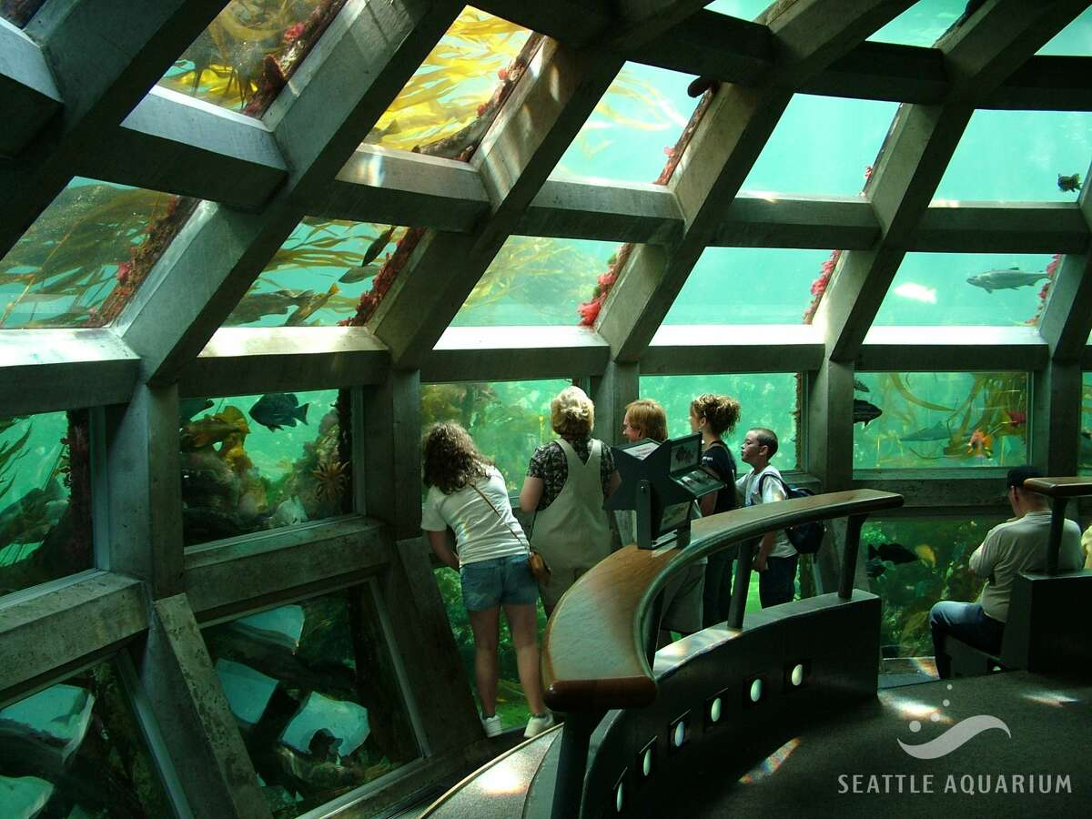 Children look at sea life in the Underwater Dome exhibit at the Seattle Aquarium. Park for free at four Seattle waterfront garages on Mother's Day, learn about the sea and eat seafood.