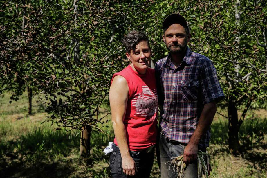 Lazzarini (left) and Seidman stand in the orchard where they had been growing organic fruit that they sold at Bay Area farmers' markets. Photo: Gabrielle Lurie / Gabrielle Lurie / The Chronicle / ONLINE_YES