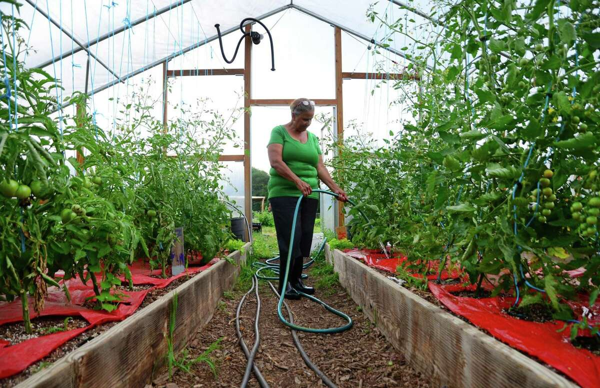 Greenhouse, nursery, floriculture and sod: 42 percent Source: UConn's Department of Agricultural and Resource Economics