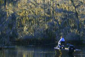 Along with being achingly beautiful natural places, the oxbow lakes sprinkled in the floodplains of many eastern Texas rivers can provide outstanding fishing for crappie, largemouth bass and sunfish.