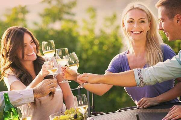 The Connecticut Wine Festival unfolds at the Goshen Fairgrounds on July 22 and 23. 15 of Connecticut's top wineries will showcase their wines. There will also be local restaurants, vendors, a wine seminar, grape stomp, live music, and more.
