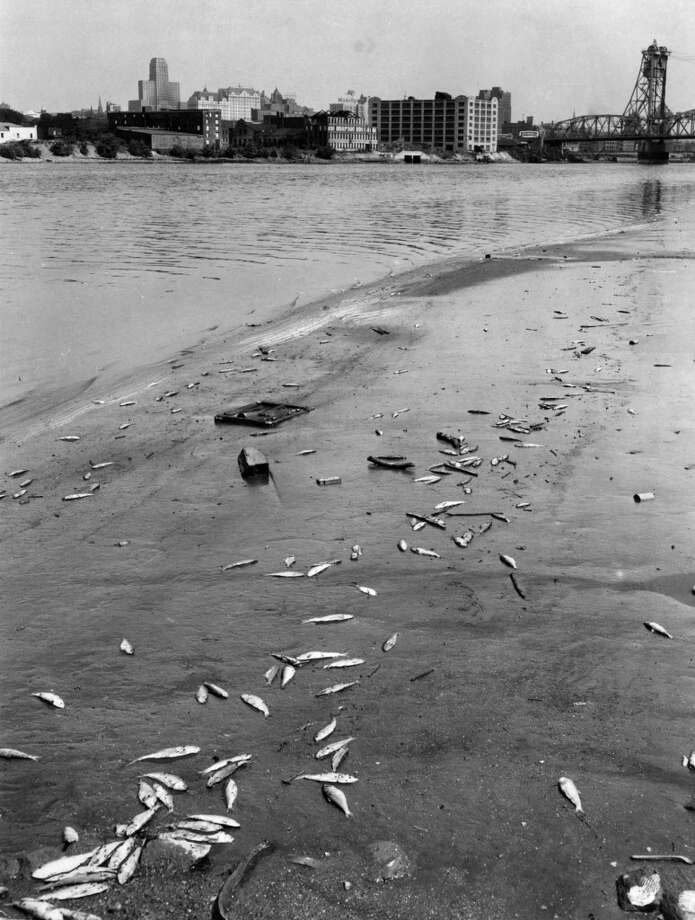Keep clicking for historic photos of life along the Hudson River.Dead fish on the shore of the Hudson River June, 25, 1953, in Rensselaer, N.Y. 1950s (Times Union archive)