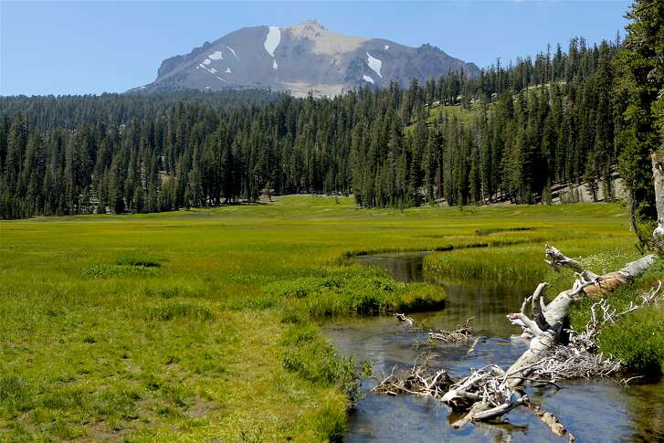 The view from Kings Creek Meadow looking up across a scraggly forest up to 10,457-foot Lassen Peak