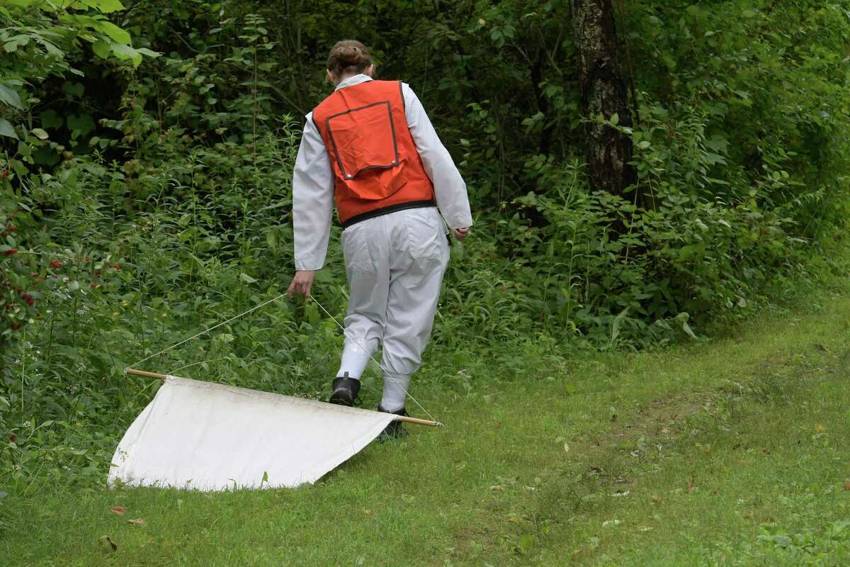 Sadie Beebe, tick surveillance team member drags for ticks for sampling at Veteran's Memorial Park after a second confirmed case of potentially deadly powassan virus has been diagnosed in the area Tuesday July 18, 2017 in Ballston Lake, N.Y. (Skip Dickstein/Times Union)