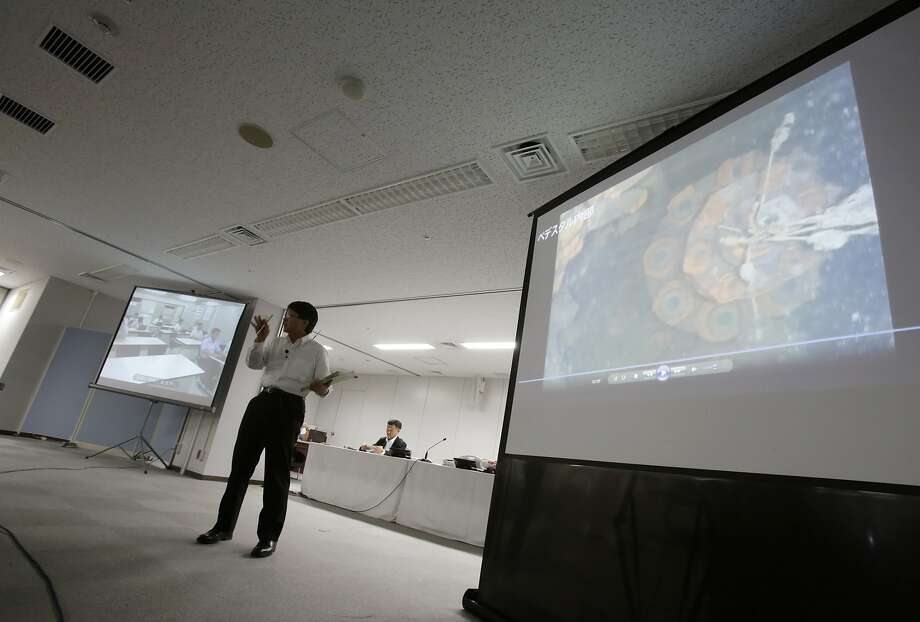 Takahiro Kimoto, a Tokyo Electric Power Co. spokesman, presents video of the underwater robot searching the remains of the Fukushima nuclear plant. Photo: Eugene Hoshiko, Associated Press