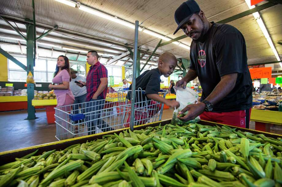 Greg Turner and his son, Johnny, pick okra at Canino's in Houston. Photo: Brett Coomer, Staff / Stratford Booster Club