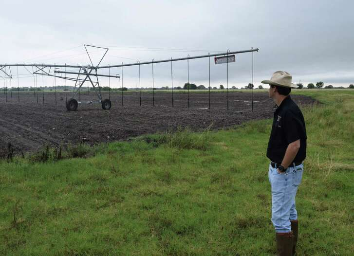 Brent Conger, managing partner of Paloma Pachanga Ranch, looks over one of the pivots on a freshly planted sunflower field that will be part of the largest dove-hunting operations in the Lone Star State when the season opens Sept. 1.