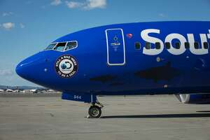 Southwest Airlines and  Discovery Channel  partnered to create a  Shark Week-themed Boeing 737-700. It will be in Houston on Friday, July 21.