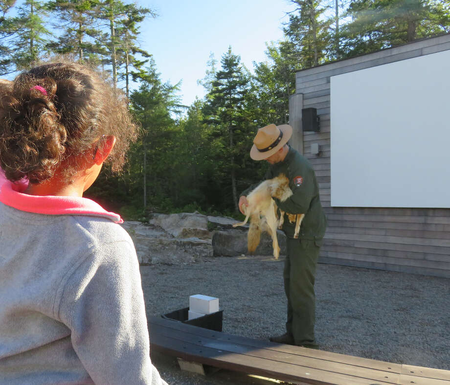 Little Wren, the author's foster daughter, attends a ranger-led demonstration at Schoodic Woods campground. Photo by Herb Terns Photo: Picasa