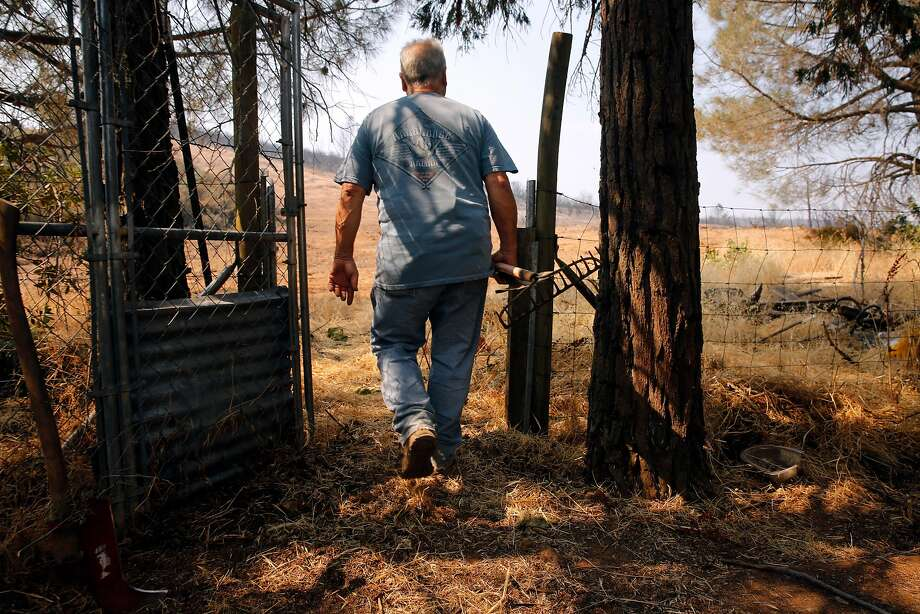 George Skogan stayed in his home during the evacuation and is now clearing brush around his backyard, in Mt. Bullion, Ca., on Friday July 21, 2017.The fire came within 30 yards of his home. Photo: Michael Macor, The Chronicle