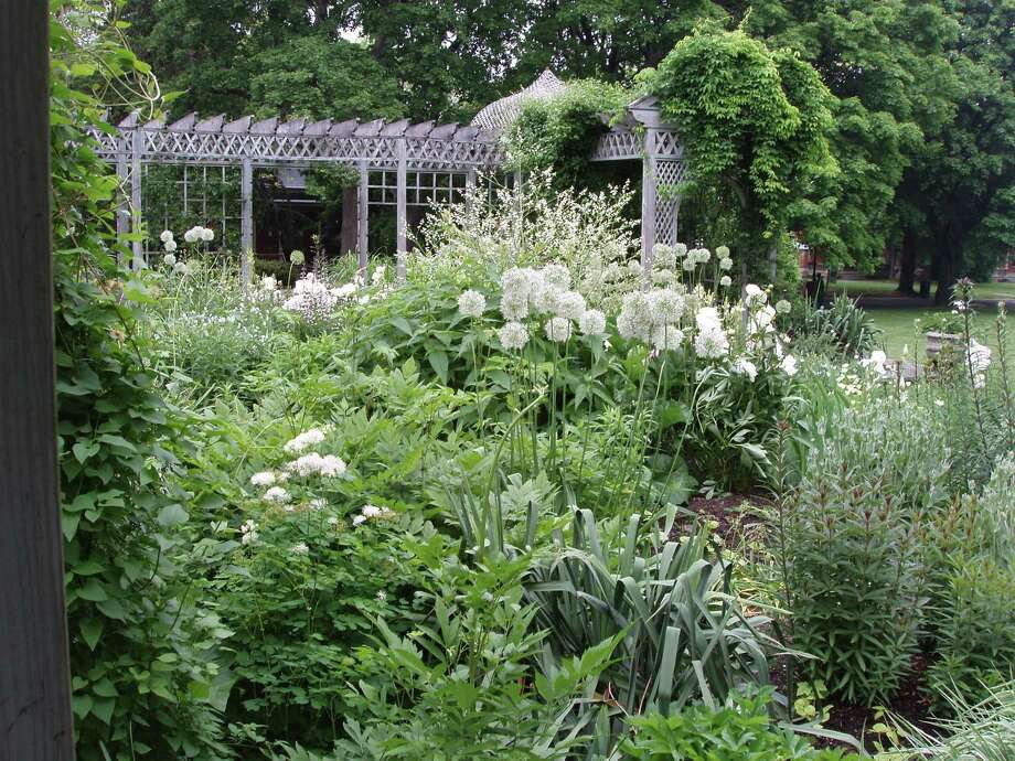 This undated photo shows the white garden at the Snug Harbor Cultural Center & Botanical Garden in Staten Island, N.Y. The garden includes white-flowering varieties of many plants, shrubs and trees. It was inspired by a historic white garden at Sissinghurst Castle in Kent, England, a National Trust site. (AP Photo/Greg Lord) Photo: AP / Greg Lord