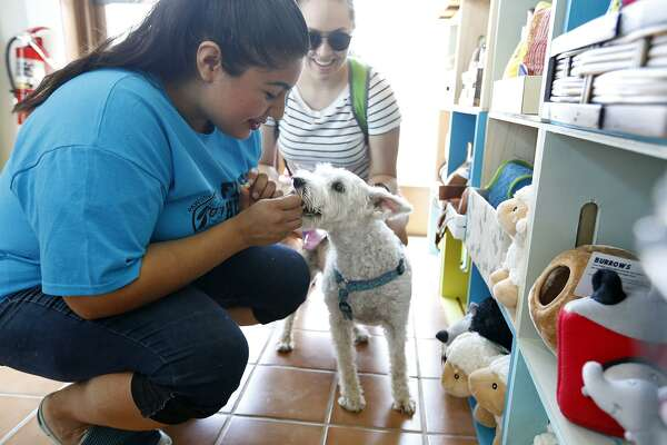 """Alexis Quiroga, owner of PAWsitively Sweet Bakery, gives Samantha Hinojosa's dog """"Luna"""" a treat. Quiroga's bakery is in E-Co Lofts, the first significant development to be built near the AT&T Center since the arena opened in 2002."""