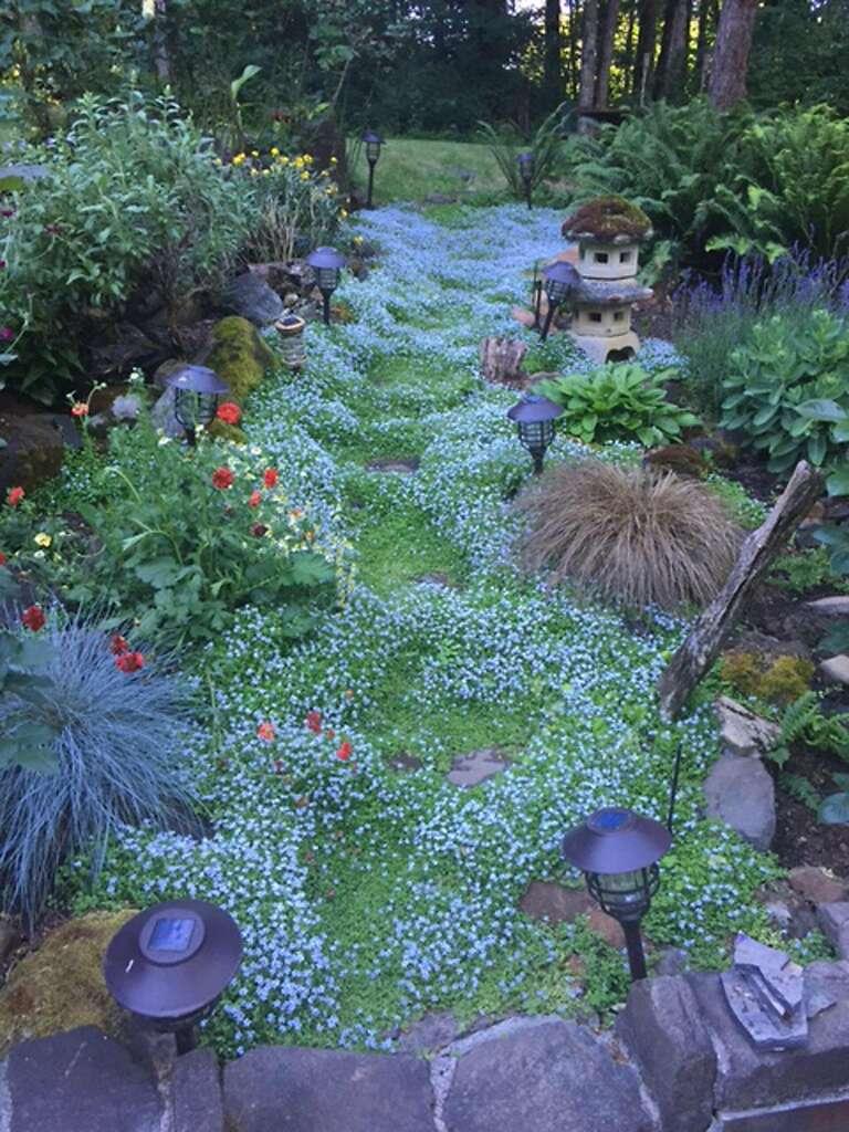 ... Garden Supply San Carlos Designs ...