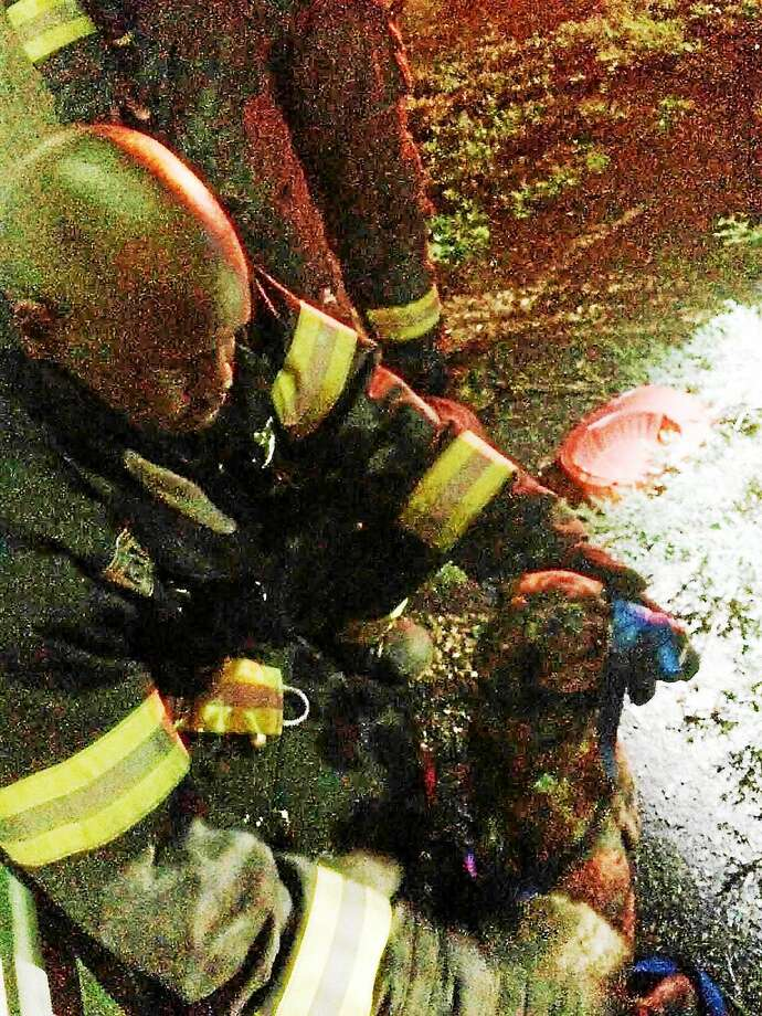 (Contributed photo) New Haven Fire Department Lt. Chris Brigham was in charge of an operation during which a pup was rescued from a Cedar Street ditch. Photo: Journal Register Co.