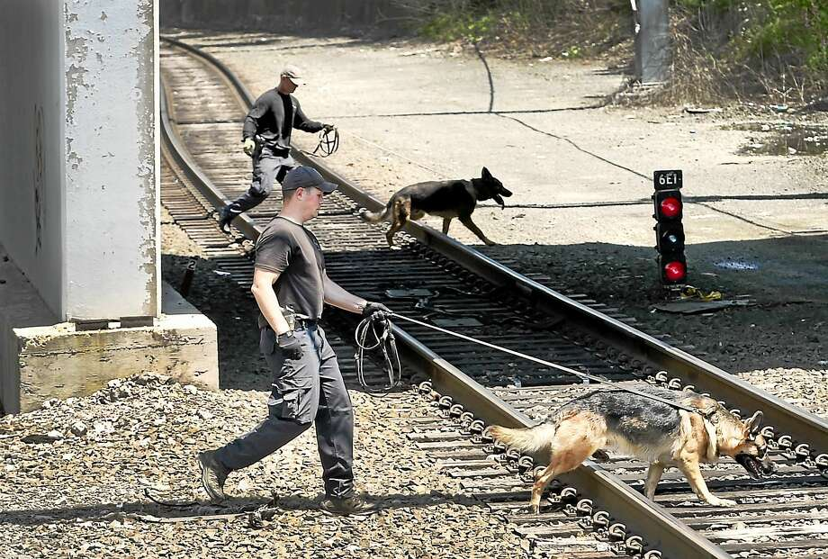 Connecticut State Police K-9 units complete a search  around the State Street Railroad Station in New Haven Thursday afternoon, July 16, 2015 after two severed legs were discovered Wednesday and then, later in the evening, an arm was found in a plastic bag. Photo: (Peter Hvizdak - New Haven Register)  / ©2015 Peter Hvizdak