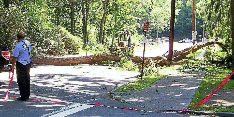 (Wes Duplantier/The New Haven Register)East Rock Road was shut down east of Livingston Street in New Haven late Thursday morning after a large tree came crashing down on power lines, a transformer and the road. Photo: Journal Register Co.
