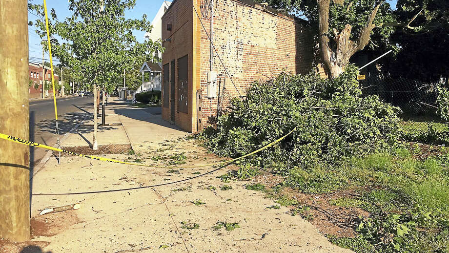 (Wes Duplantier/The New Haven Register) Gusty winds and powerful thunderstorms brought these tree limbs crashing down onto Columbus Avenue near Arch Street in New Haven early Monday evening. By early Tuesday, the branches had been piled up and roped off with yellow tape. The storms swept through the region quickly, knocking out power and leaving behind a path of destruction. Photo: Journal Register Co.
