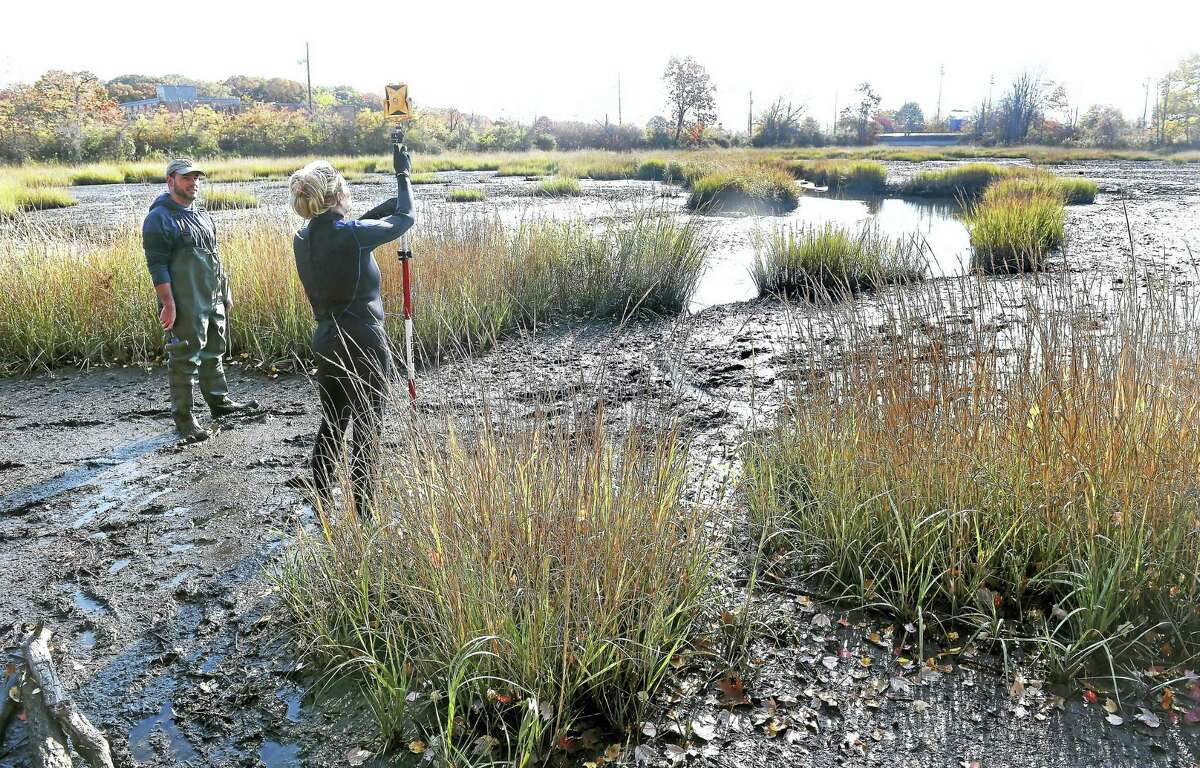(Arnold Gold-New Haven Register) Southern Connecticut State University grad student Scott Thibault (far left) and junior Shannon Bronson take part in a study of the marsh off of the Cove River in West Haven on 11/5/2016.
