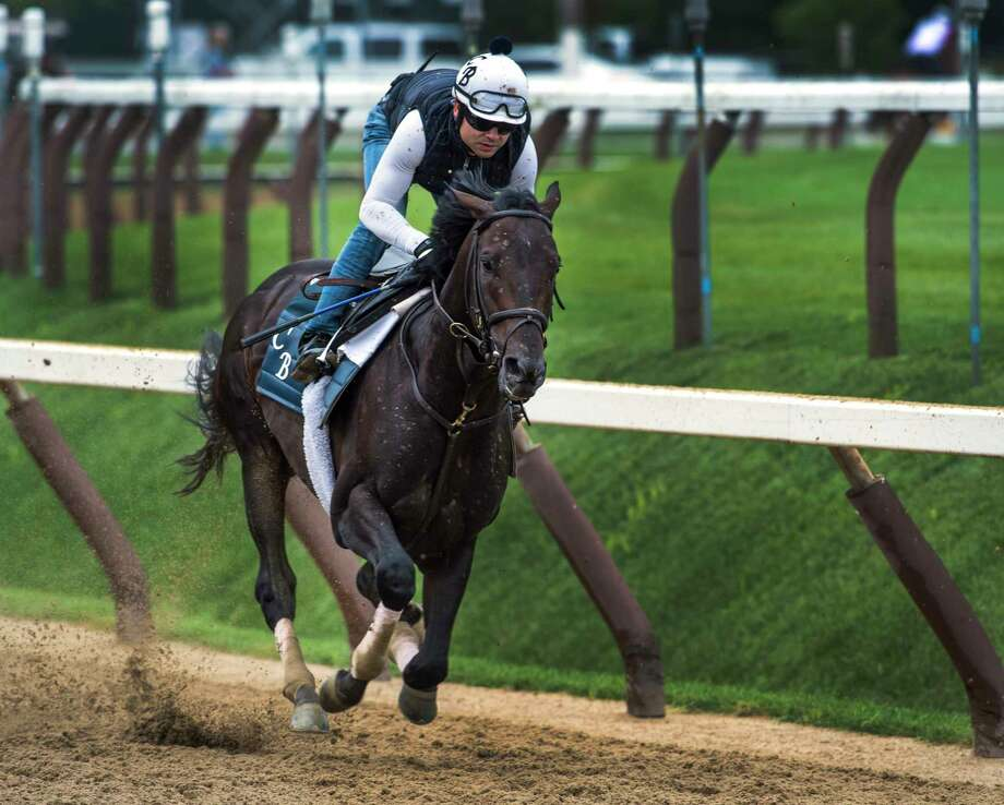 2017 Preakness winner Cloud Computing has his last major prep for The Jim Dandy Saturday July 23, 2017 at the Saratoga Race Course in Springs, N.Y. (Skip Dickstein/Times Union) Photo: SKIP DICKSTEIN