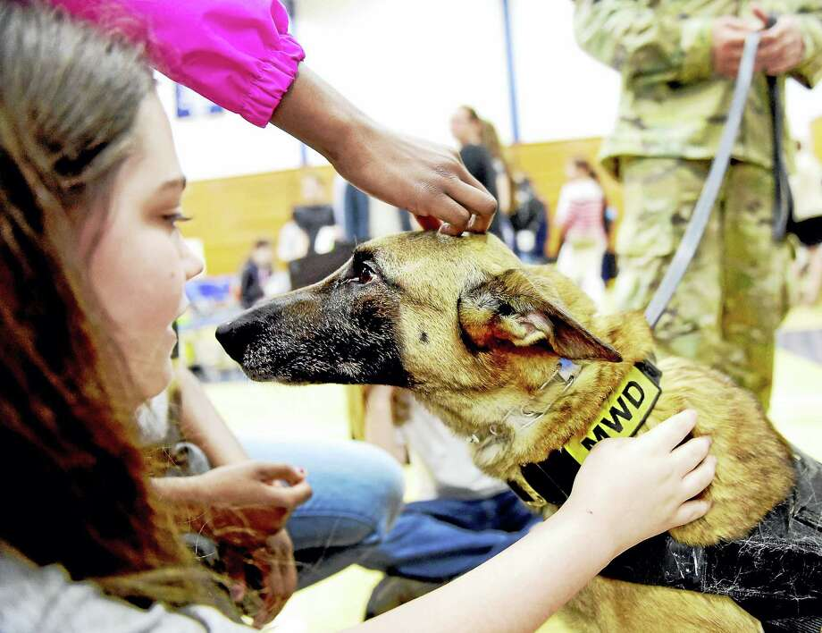 Melissa Pope of Hamden, 13, left, pets U.S. Army Military Working Dog Balou, a Belgian Malinois handled by Army Sgt. Christopher Rufini during the town's Veterans Awareness Day, sponsored by the Hamden Veterans Commission Wednesday at Quinnipiac University. See story, A4 Photo: Peter Hvizdak — New Haven Register   / Peter Hvizdak