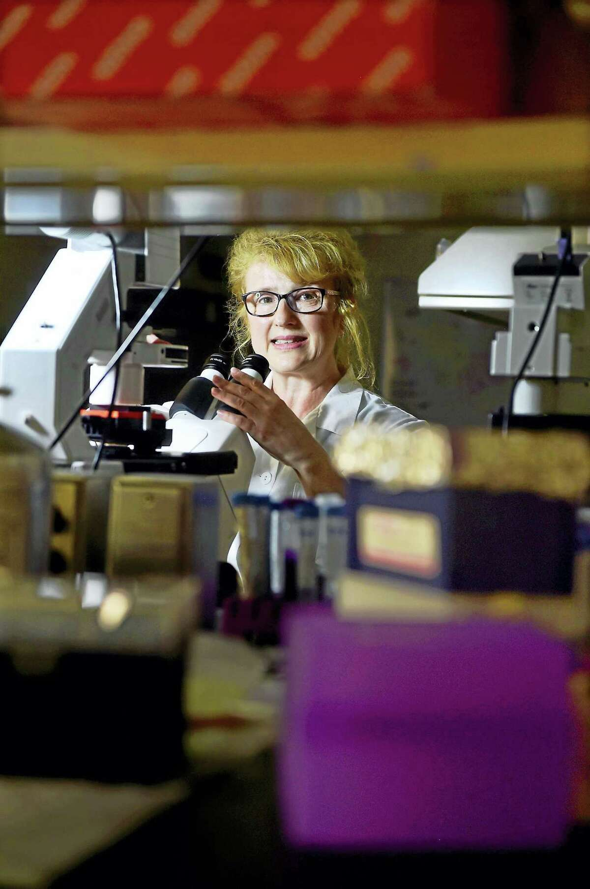 University of New Haven professor Eva Sapi, chairwoman of the Department of Biology and Environmental Science, with an atomic force microscope in the Lyme Disease Research Group lab at UNH.