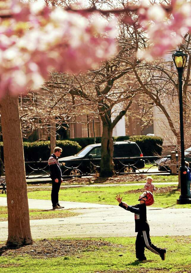 Under cherry blossoms, Bobby West of New Haven, 6, chases after soap bubbles blown by his mother (not in photo) during a leisurely morning almost a week ago in Wooster Square Park. Photo: Peter Hvizdak — New Haven Register   / ?2017 Peter Hvizdak