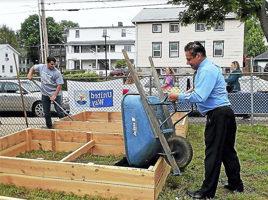 Contributed photo — Greg Martin  Ansonia Mayor David Cassetti pitches into fill one of the planting containers at the community garden at Gatison Park. Photo: Digital First Media
