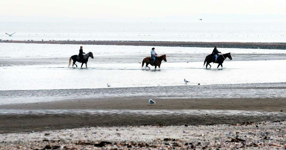 From left, Jenny Corso of Derby, Lucy Reynolds of Seymour and Trish Perrotti of Orange ride horses at Silver Sands State Park in Milford during low tide.