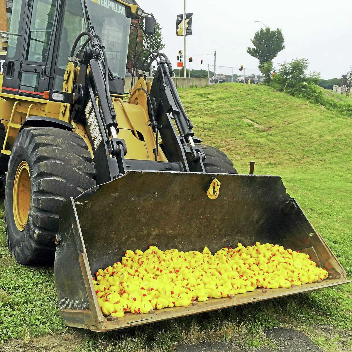 Derby Day festivities include a rubber duck race down in the Housatonic River.