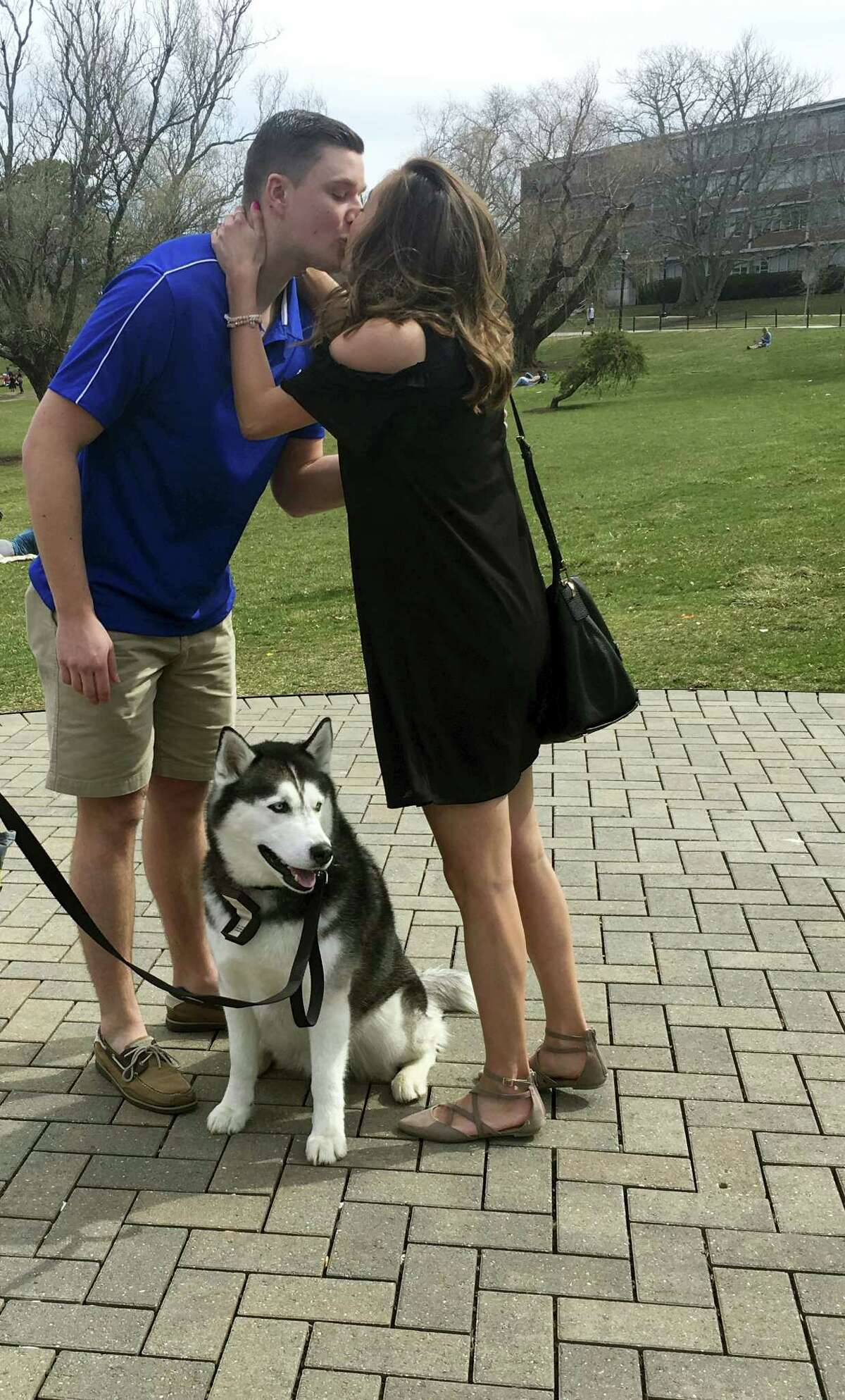 In this April 10 photo, University of Connecticut mascot Jonathan, a Siberian Husky, assists Daniel Bronko of Enfield in proposing to his girlfriend, Holly Korona, on the school's campus in Storrs.