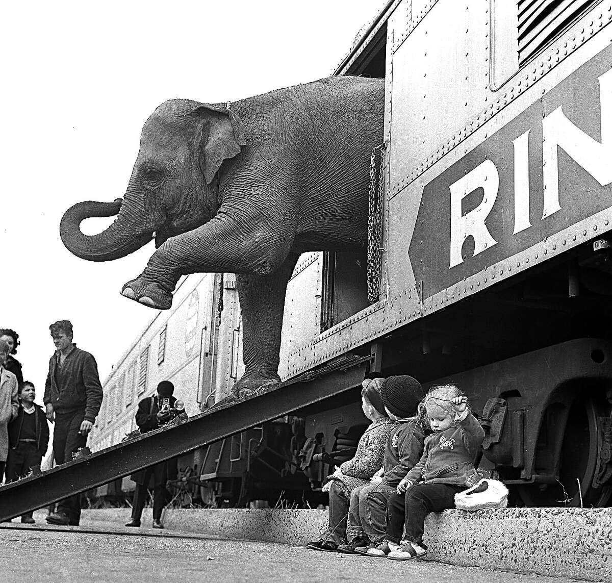In this April 1, 1963, file photo, a Ringling Bros. Circus elephant walks out of a train car as young children watch in the Bronx railroad yard in New York. The Ringling Bros. and Barnum & Bailey Circus is drawing to a close this month, May 2017, after 146 years of performances and travel.