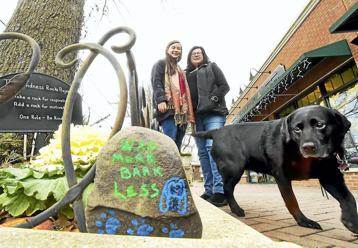 Doreen Day, owner of Sweet Luna's Frozen Desserts in Old Saybrook, her dog Luna, and employee Diana Chan in front of their Kindness Rock Garden at the Main Street. Day, Chan and other employees at the frozen yogurt shop add positive inspirational messages to rocks adding design and color to them, then put the rocks into a garden in front of the shop for people to enjoy or to take home with them.