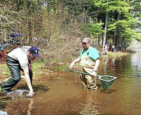 Free family fishing day at Killingworth's Chatfield Hollow