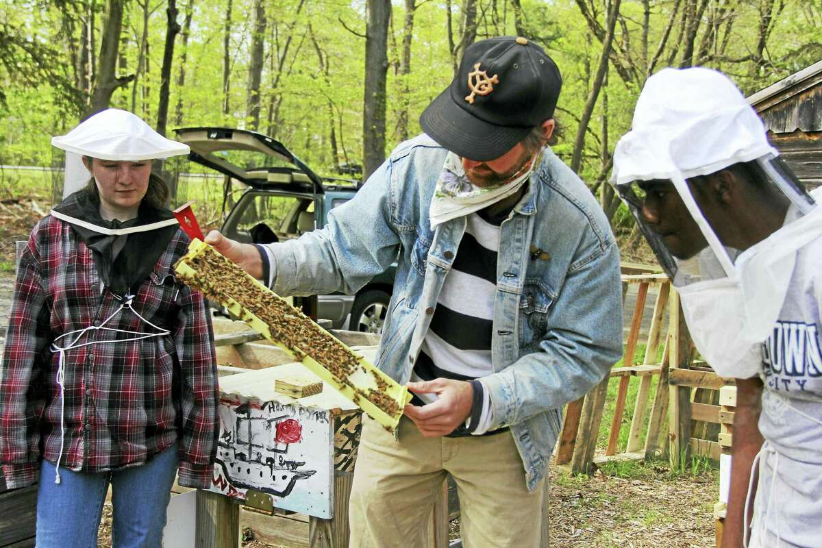 Tim Dutcher, an environmental educator at Common Ground High School, works with students at the newly-donated bee hives at West Rock Nature Center.