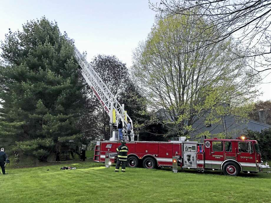 An 8-year-old boy who climbed about 55 feet up a pine tree was rescued Wednesday, fire officials said. Photo: Woodbridge Fire Department