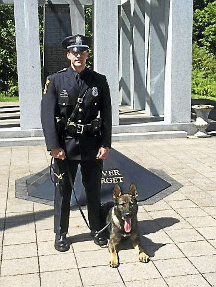 Mack and his handler, Officer Steven Napoletano, are members of the Milford Police Department's K-9 Unit. Photo: Photo From Milford Police Department
