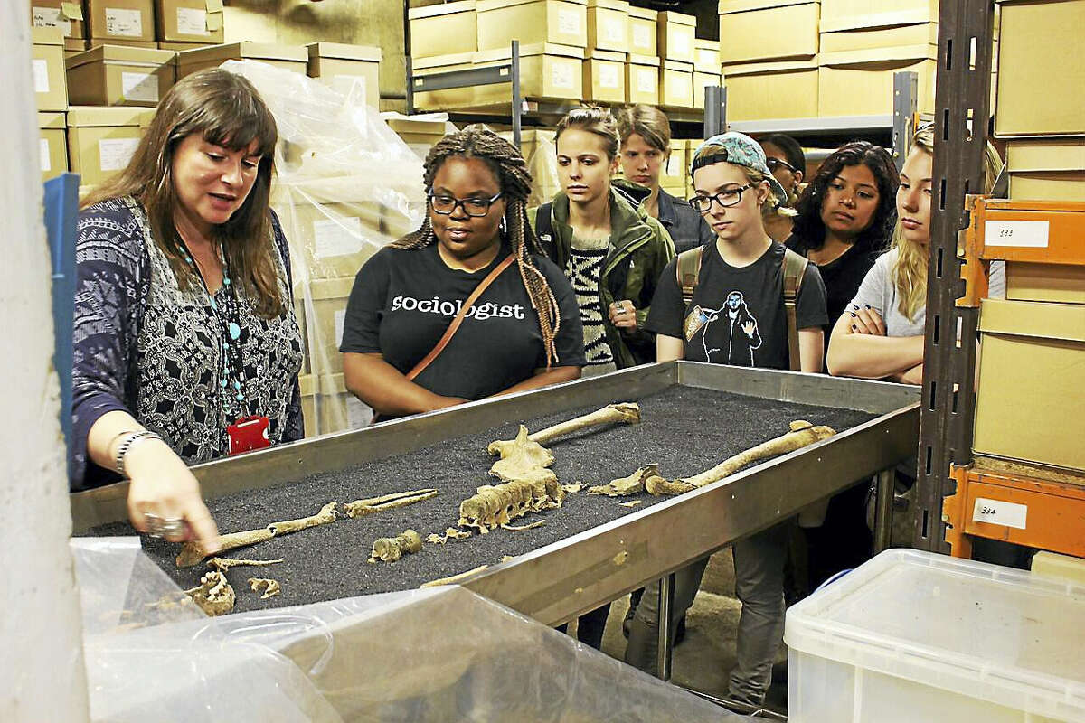 Contributed photo Students from Quinnipiac examine Roman skeletons at the Museum of London, where they are on a trip related to an anthropology class. Students decided to stay for more studies, despite the violence Saturday in London.