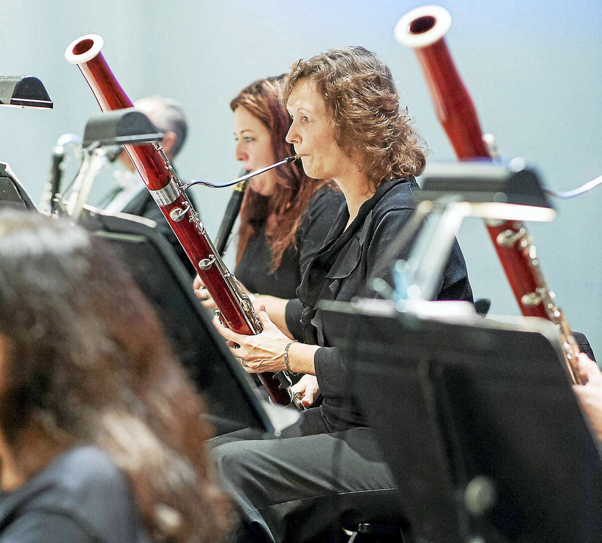 NHSO bassoonist Sue Zoellner-Cross will perform at the family event.