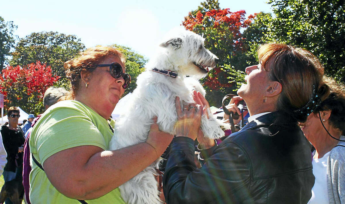Rev. Sharon Gracen, right, rector of Branford's Trinity Episcopal Church, gives her blessing to this pooch at a previous Animal Awareness Day.